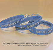 Esophageal Cancer Awareness Wristbands Bracelets Wristband Bracelet The Salgi Esophageal Cancer Research Foundation Periwinkle AllPeriwinkleEverything